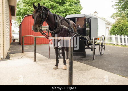 Amish horse and buggy, carriage, Lancaster County, Pennsylvania, USA - Stock Photo