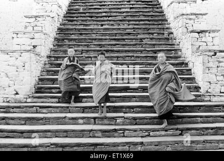 Young monks come down the steps of the ancient Dzong ; monastery at Paro ; Bhutan - Stock Photo