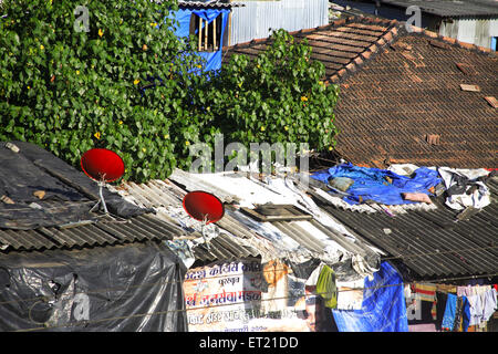 Dish antenna in slum ; Behram Naupada ; Anant Kanekar Marg ; Bandra ; Bombay Mumbai ; Maharashtra ; India 17 September - Stock Photo
