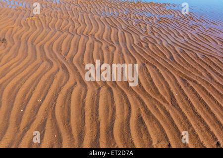 Sand ripples on a north America beach. - Stock Photo