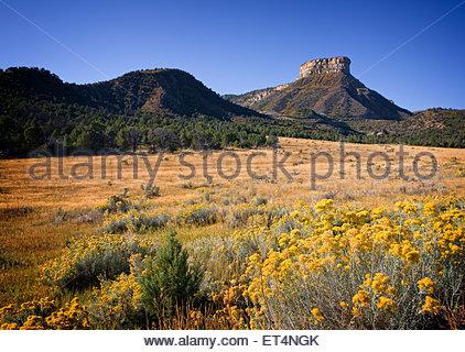 Mesa Verde National Park, Colorado - Stock Photo