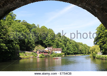 Durham, UK 11th July 2015 A hot sunny June day is enjoyed on the River Wear in the City of Durham  (c) Jim Nicholson - Stock Photo