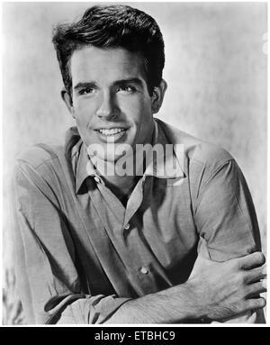 Actor Warren Beatty, Publicity Portrait,  1962, - Stock Photo