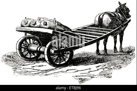 Horse-Drawn Yarmouth Cart, England, 'Classical Portfolio of Primitive Carriers', by Marshall M. Kirman, World Railway - Stock Photo