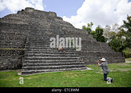 A popular day trip for cruise passengers, Chacchoben on the Mexican Riviera was settled by the Maya as early as - Stock Photo