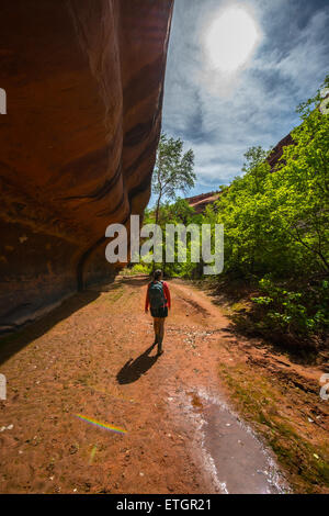 Girl Hiker Backpacker in the Neon Canyon Utah Escalante National Park - Stock Photo