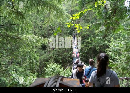 lynn valley canyon suspended bridge - Stock Photo