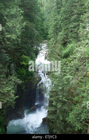 waterfall at lynn valley canyon - Stock Photo
