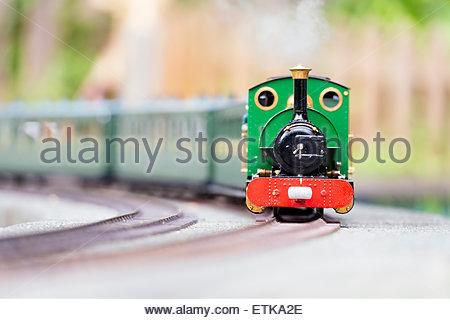 Hereford Society of Model Engineers model steam train railway loco.. - Stock Photo