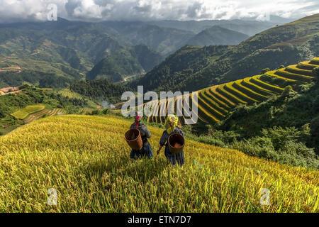 Two women on terraced rice fields, Mu Cang Chai, YenBai, Vietnam - Stock Photo
