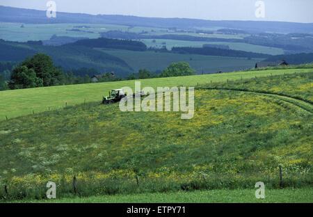BEL, Belgium, Eastbelgium, fields between Honsfeld and Holzheim near Buellingen.  BEL, Belgien, Ostbelgien, Felder - Stock Photo