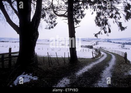 BEL, Belgium, Eastbelgium, fields near Eibertingen near Ambleve.  BEL, Belgien, Ostbelgien, Felder bei Eibertingen - Stock Photo