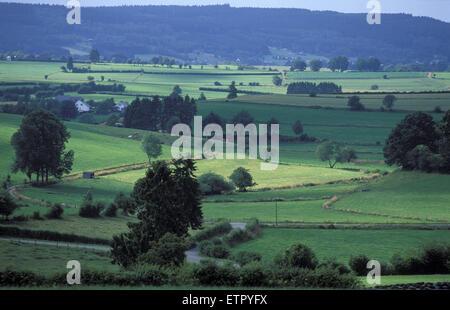BEL, Belgium, Eastbelgium, fields at Meyerode near Ambleve.  BEL, Belgien, Ostbelgien, Felder bei Meyerode nahe - Stock Photo