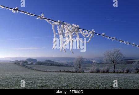 BEL, Belgium, Eastbelgium, winter landscape near Burg-Reuland, hoarfrost at a fence.  BEL, Belgien, Ostbelgien, - Stock Photo