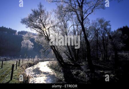 BEL, Belgium, Eastbelgium, winter at the river Our valley near the village of Ouren.  BEL, Belgien, Ostbelgien, - Stock Photo