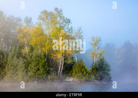 Early morning mist on Bay Lake, with  birch trees. - Stock Photo
