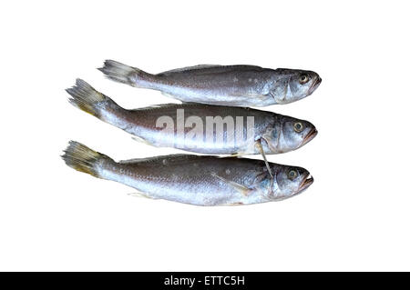 Dried salted fish stock photo royalty free image for Dried salted fish