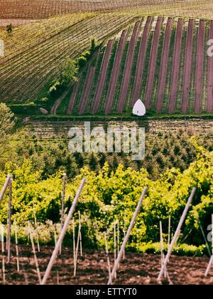 Germany, Hesse, Rhine Hesse, Flonheim, View of trullo house in vineyard - Stock Photo