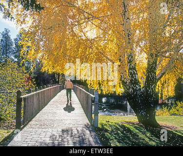 An elderly man all alone walks across a bridge in the autumn. - Stock Photo