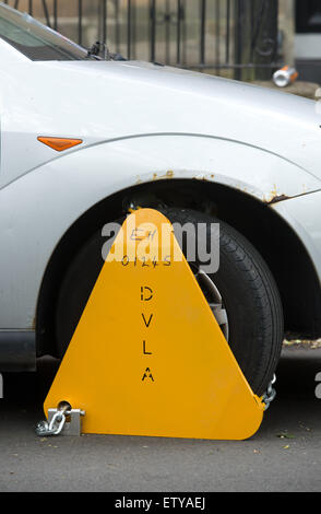 Wheel Clamp on an untaxed vehicle ( Ford Focus ) in Edinburgh, Scotland.  picture by Alex Hewitt - Stock Photo