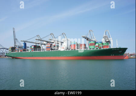THALASSA DOXA - IMO 9667174, Amazonehaven, Port of Rotterdam, pic2 - Stock Photo