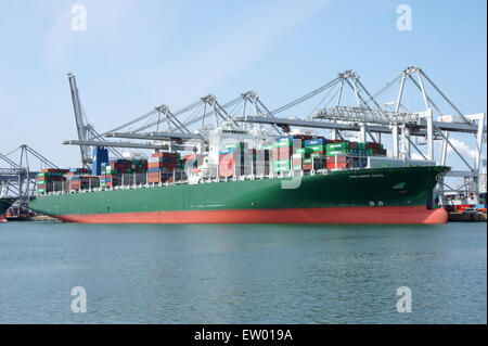 THALASSA DOXA - IMO 9667174, Amazonehaven, Port of Rotterdam, pic3 - Stock Photo