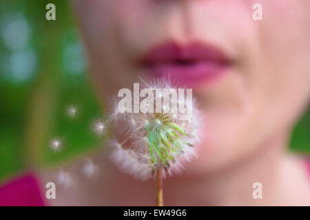 Woman blowing Dandelion seeds - Stock Photo