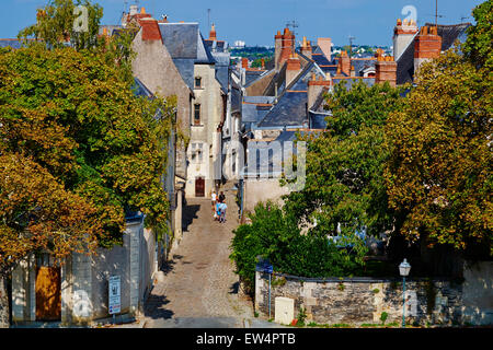 France, Maine-et-Loire, Angers, roof of the city