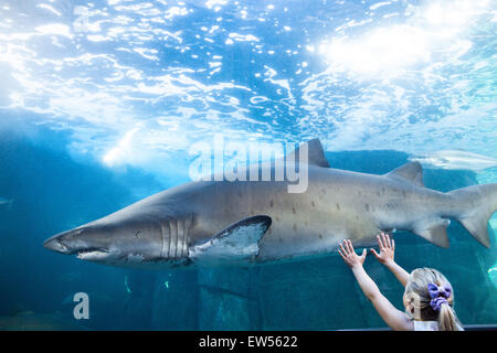 Young woman touching a shark tank - Stock Photo