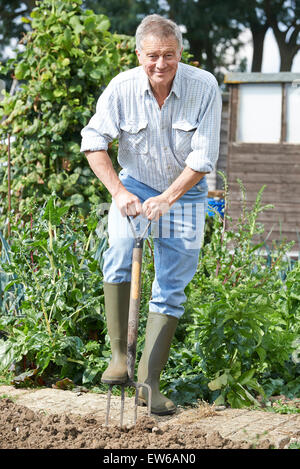 Senior Man Digging Vegetable Patch On Allotment - Stock Photo