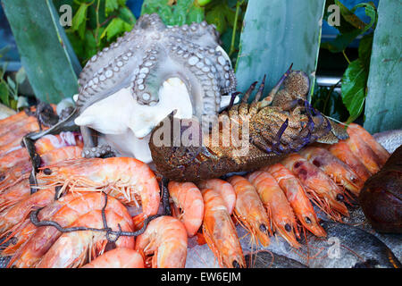 Delightful fresh seafood display. Offered for consumption on the quayside of Rethymnon harbour on the island of - Stock Photo