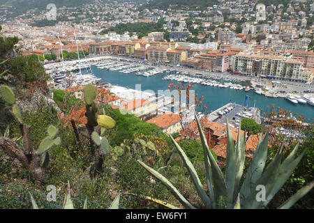 View over the old port Nice France with exotic plants in the foreground - Stock Photo