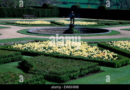Pale yellow tulips in box edged beds around a circular pool in a large formal country garden in spring - Stock Photo