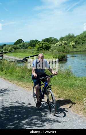 people cycling along a towpath at Caen Hill Locks, Devizes, UK - Stock Photo