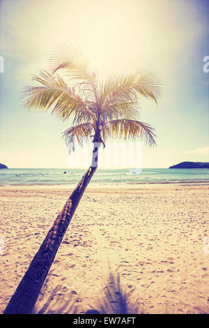 Vintage stylized tropical beach with palm tree at sunset. - Stock Photo