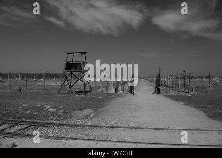 Auschwitz Birkenhau Atrocities - Stock Photo