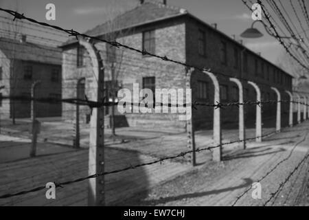 Auschwitz Birkenhau Atrocities - Stock Photo