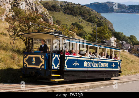 UK, Wales, Conwy, Llandudno, Ty Gwyn Road, Great Orme Tramway, tram climbing steep hill - Stock Photo