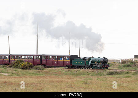 Little steam train on the Romney, Hythe and Dymchurch Railway, Kent, England - Stock Photo