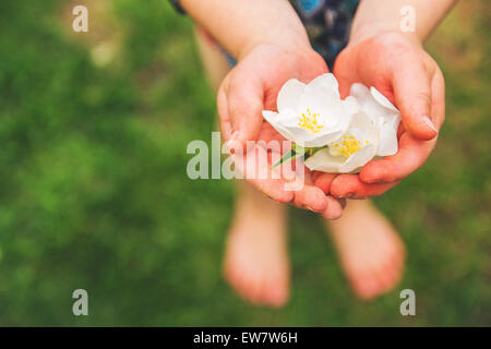 Boy holding white blossoms in his hand - Stock Photo