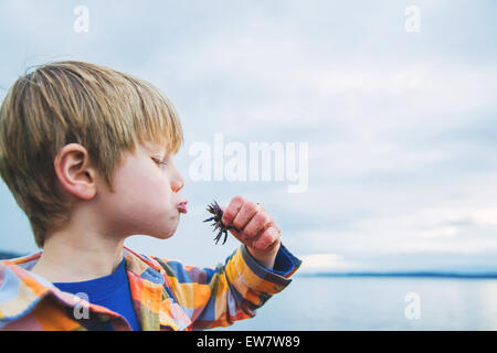Side view of a boy kissing a crab on beach - Stock Photo