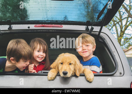 Three children in the back of vehicle with new puppy - Stock Photo
