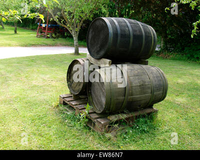 Old cider barrels at Torre Cider Farm, Somerset, UK - Stock Photo