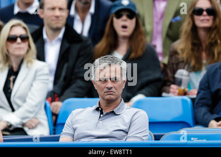 London, UK. 20th June, 2015. Queens Aegon Championship Tennis. Chelsea Manager Jose Mourinho watching the first - Stock Photo