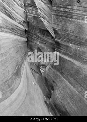 View of the sidewall of Zebra Slot Canyon, along Harris Wash, Grand Staircase-Escalante National Monument, near - Stock Photo