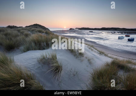 Dunes at Crow Point, Braunton Burrows. Devon, UK. Part of the North Devon UNESCO Biosphere Reserve. - Stock Photo