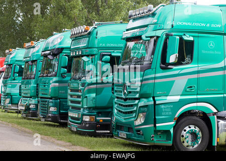 Green Lorries parked side by side on a grass verge - Stock Photo