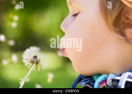 Caucasian blond baby girl blows on a dandelion flower in a park, selective focus on lips - Stock Photo