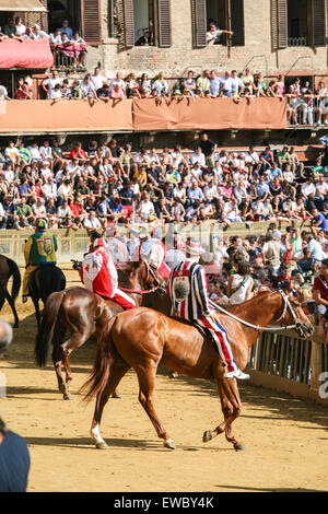 At start of race during Palio horse race trial.There are 6 trial races before the big race. Siena is famous for - Stock Photo