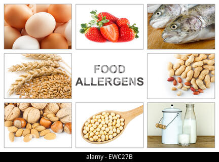 Allergy food concept. Food allergens as eggs, milk, fruit, tree nuts, peanut, soy, wheat and fish. Text 'food allergens' - Stock Photo
